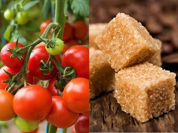 Đường nâu và cà chua giúp làm sạch và thải độc cho da